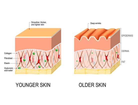 hyaluronzuur in de huid